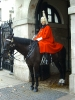 London 2004_37